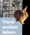 Mastkaninchen - Internationale Petitionskampagne